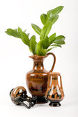 Amphora with a green branch — Stock Photo