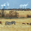Coal Powerstation in Africa with wildlife in the area — Stock Photo #1613043