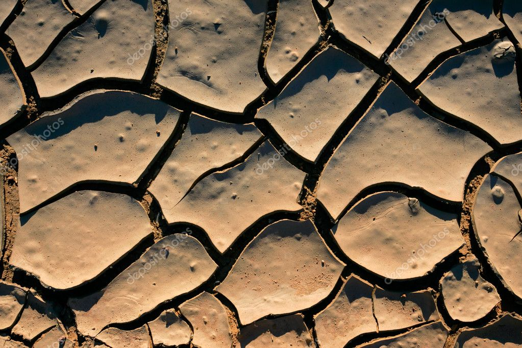 Cracked mud at the onset of a drought — Stock Photo #1715807