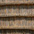 Reed wall background — Stock Photo