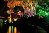 Illuminated tree, Guilin, China — Stock Photo