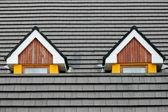 Attic loft windows — Stock Photo