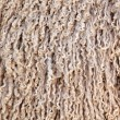 Stock Photo: Angorgoat wool background
