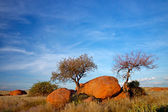 Granite boulders and trees — Stock Photo