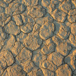 Cracked mud — Stock Photo #1994643