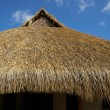 Thatched roof - Foto Stock