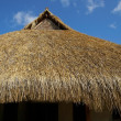 Stock Photo: Thatched roof