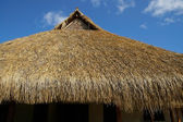 Thatched roof — Stock Photo