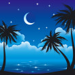 Vector night coast — Stock Vector