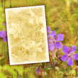 Stock Photo: Vintage flower textured background