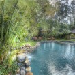 Pool and yard, HDR — Stock Photo #1811513