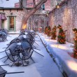 Stock Photo: Christmas Garden, HDR