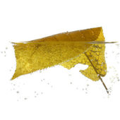Yellow leaf in water with bubbles — Stock Photo