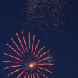 Firework in dark sky — Stock Photo