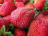 Background Strawberry — Stock Photo