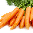 Bunch of carrot — Stock Photo #1646880