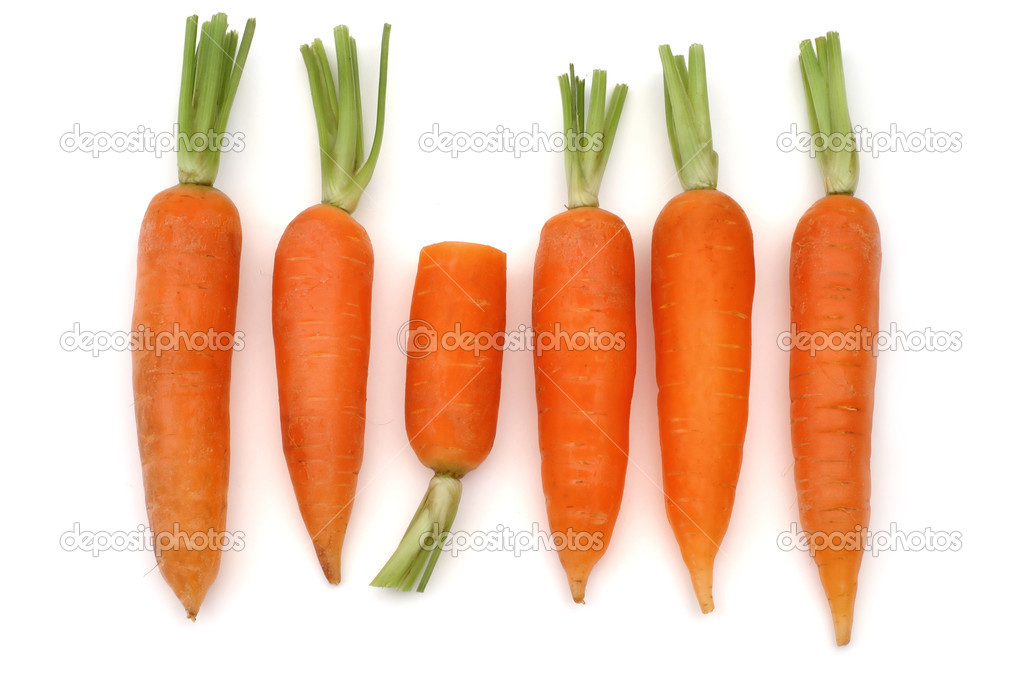 Bunch of carrot isolated on white background  Stock Photo #1647008
