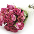 Dried roses bouquet — Stock Photo
