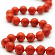 Red corall necklace — Stock Photo