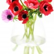 Anemone bouquet in vase — Stock Photo #2260937