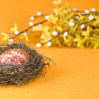 Stock Photo: Nest with easter egg
