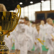 Stock Photo: Karate tournament