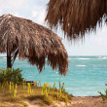Beautiful Caribbean beach — Stock Photo #1650835