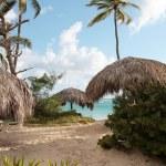Beautiful Caribbean beach — Stock Photo #1651082