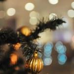 Xmas tree decoration — Stock Photo #1673386