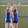 Volleyball - Foto de Stock