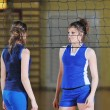 Volleyball — Stock Photo #1673691