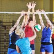 Volleyball - Stock Photo