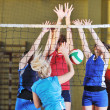 Volleyball — Stockfoto #1673697