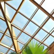 Palm and wooden roof construction — Stock Photo #1679214
