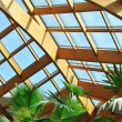 Stock Photo: Palm and wooden roof construction