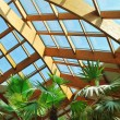 Palm and wooden roof construction — Stock Photo #1679287