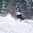 Winer woman ski - Stock Photo