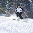 Winer woman ski - Photo