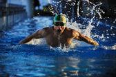 пловец — Стоковое фото