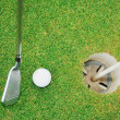Golf ball game - Stock Photo