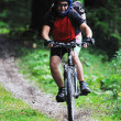 Royalty-Free Stock Photo: Mount bike man outdoor