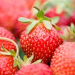 Stockfoto: Strawberries with shalow depth of view