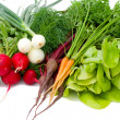Set of vegetables — Stock Photo #1729043