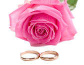 Pink rose and two wedding rings — Stock Photo