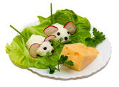 Salad - two mouse and cheese — Stock Photo