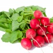 Bunch of red radish — Stock Photo