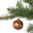 Christmas ball in a fir branch — 图库照片