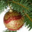 Christmas ball in a fir tree — Foto Stock
