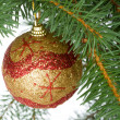Christmas ball on fir branch — Stock Photo #1798732