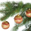 Christmas balls on fir branch — Stok fotoğraf